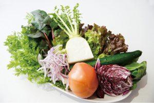 グルテンフリーはセリアック病の食事療法から生まれた