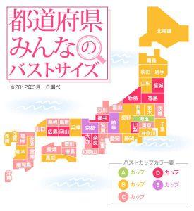 埼玉県貧乳問題