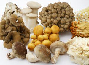 菌活のために食べたい食材