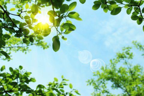 紫外線吸収剤不使用の日焼け止めを使うメリットは?ノンケミカルを選ぶべき?